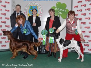 Basil takes Group 2 at the Celtic Winners show