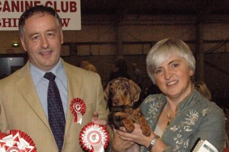 Glenariff Ganache - Reserve Best baby Puppy in Show