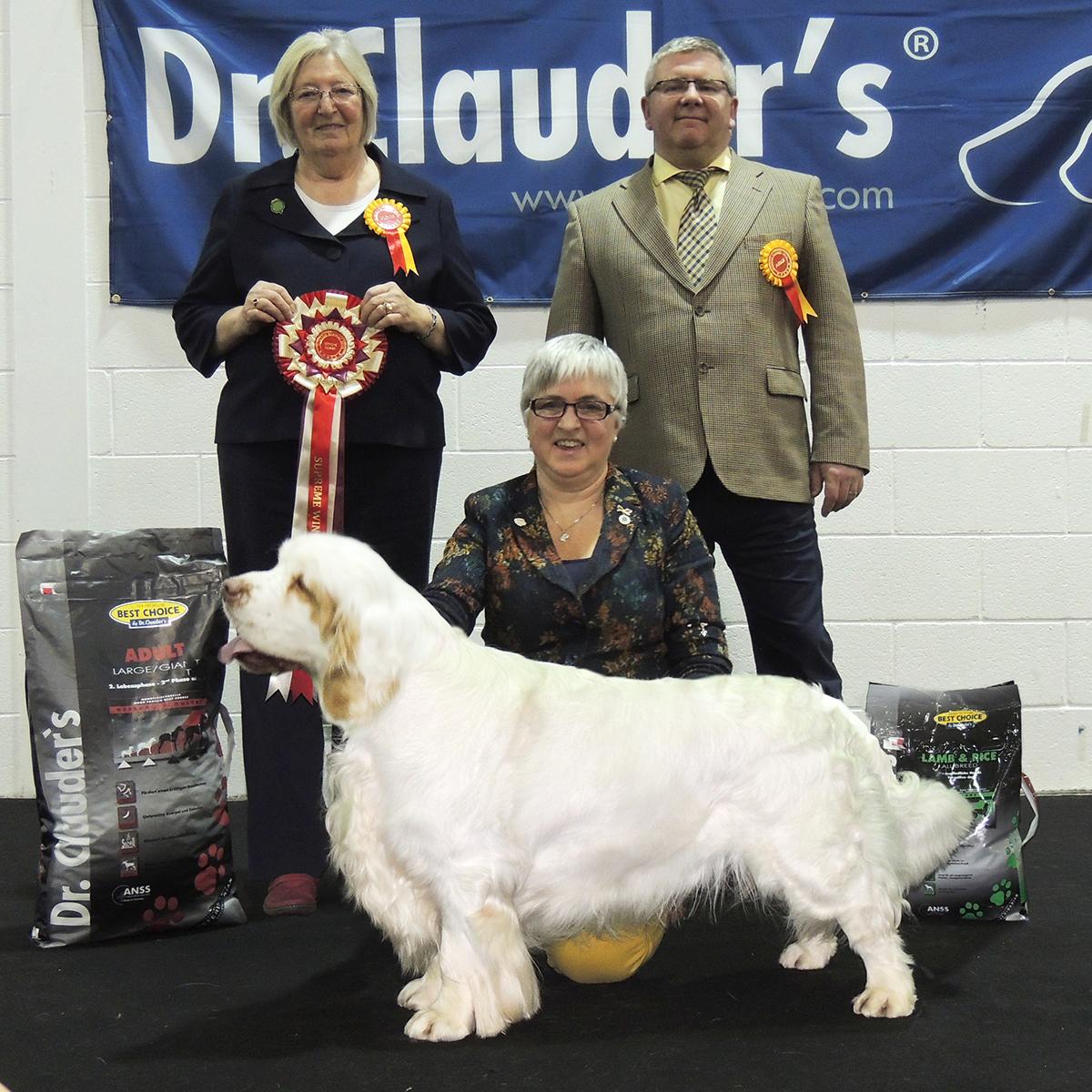 Supreme Winner - Gundog Classic 2015