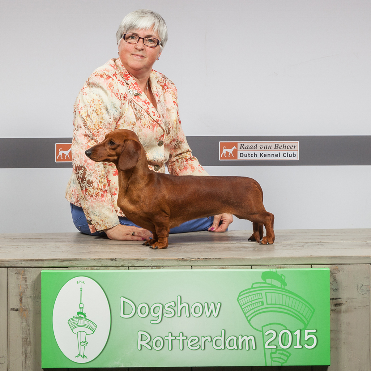 Memphis - Bitch CAC, CACIB & BOS winner in Rotterdam